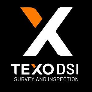 Texo logo